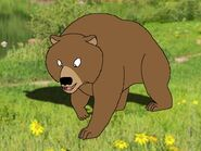 Rileys Adventures Syrian Brown Bear