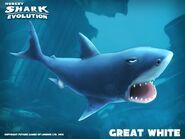 Hungry shark white