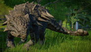 JWE Ankylosaurus