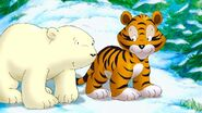 Lars and the Tiger