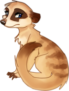 Anime Meerkat