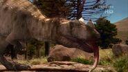 Discovery.Channel.When.Dinosaurs.Roamed.America.HDTV.XviD-AMBER.avi snapshot 00.28.45 -2016.08.30 16.54.32-