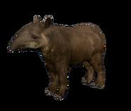 Green Hell Tapir