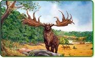 Irish elk2