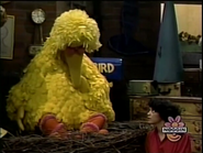 Big Bird goes to sleep to Maria's life job story