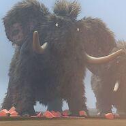 JungleBunch Mammoth