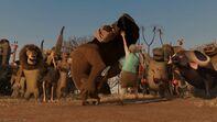 Madagascar2-disneyscreencaps.com-9125