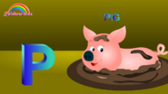 Rainbow Kidz Pig