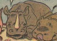 The Black Sorcerer Rhinoceros
