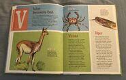 The Dictionary of Ordinary Extraordinary Animals (52)
