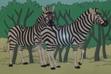 Batw 031 zebras