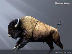 Bison antiquus by dinogod-d3hkr8m.jpg
