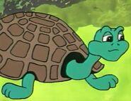 Dingo pictures goldie turtle