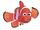 The Fish Of Madagascar