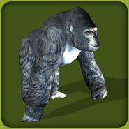Mountain Gorilla (Blue Fang)