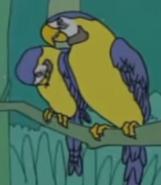Batw 021 macaw