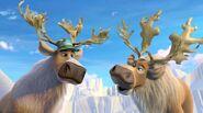 NOTN Reindeer