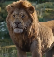 Live Action Adult Simba