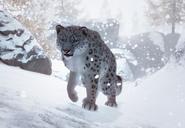 Snow-leopard-planet-zoo