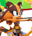 Sticks-the-jungle-badger-mario-and-sonic-at-the-rio-2016-olympic-games-8.57