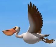 Gon Pelican
