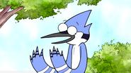 Mordecai Don