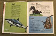 The Dictionary of Ordinary Extraordinary Animals (47)
