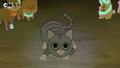 WBB Grey Cat
