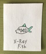 X-Ray Fish Begins With X