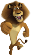 Alex the Lion Walking