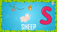 Baby Time Sheep