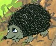 Dingo pictures goldie hedgehog