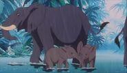 Elephants1997