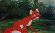 Fox-and-the-hound-disneyscreencaps.com-7344