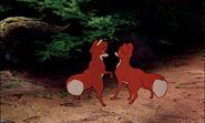 Fox-and-the-hound-disneyscreencaps.com-8473
