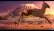 Gazelles in Animal Kingdom Let's Go Ape