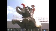 MIA Elephant