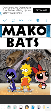 MKBTS Poster.png