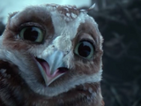 Digger (Legend of the Guardians: The Owls of Ga'hoole)
