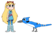 Star meets Blue Jay