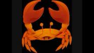 Safari Island Crab
