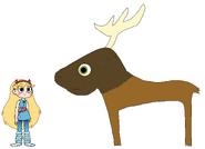 Star meets Elk