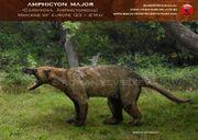 Amphicyon major by romanyevseyev-d4ufv56.jpg