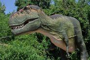 Dallas Zoo Tyrannosaurus Rex