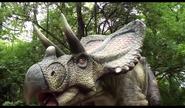 Dinosaurs Alive! Chasmosaurus