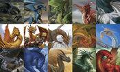 Fifteen Dragons of D&D