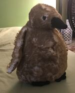 Irving the King Penguin Chick