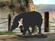 Rileys Adventures Baird's Tapir