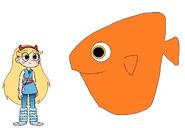 Star meets Ocean Sunfish