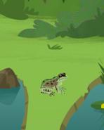 Wild Kratts Leopard Frog